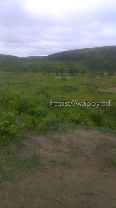 Terrain à Bibwa