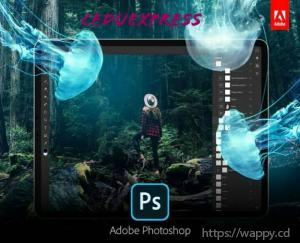 Formation en Photoshop