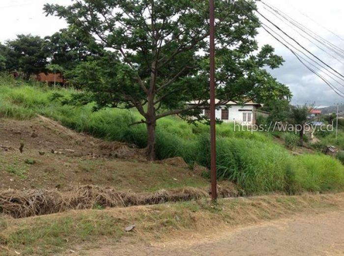 Terrain de 2618m2 avec maison basse