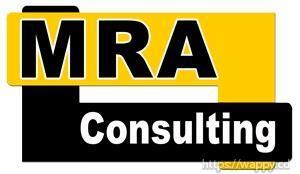 Consultant d'affaire et de  gestion