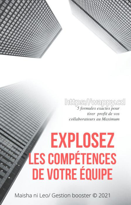EXPLOSEZ LES COMPÉTENCES DE VOTRE ÉQUIPE. PDF