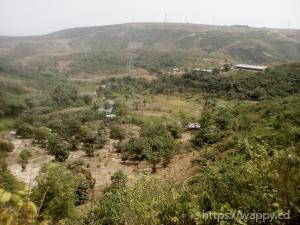 Concession de 10 hectares